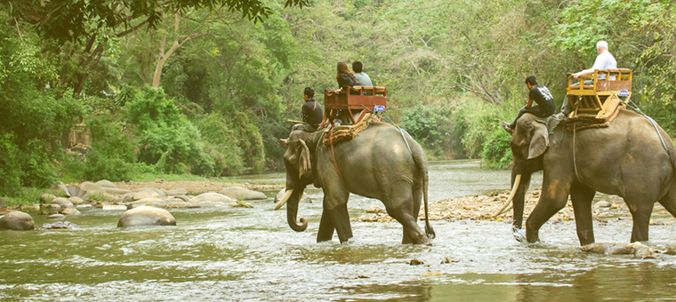 Chiang Mai Adventure & Beach 2